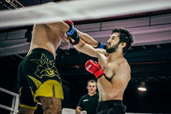 Athletes MMA in ring strike each other blows to head Royalty Free Stock Image