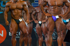 Athletes participate in Bodybuilding Champions Cup Royalty Free Stock Photos
