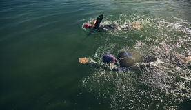 Athletes practicing swimming for triathlon race. Top view of athletes practicing swimming for triathlon race. Triathlon training in open water stock images