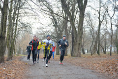 Athletes run on the road in the park Royalty Free Stock Images