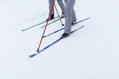 Athletes on skis in forest Stock Photos