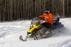 Athletes on a snowmobile. Athlete rides in the winter woods on a snowmobile Royalty Free Stock Image