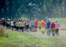 Athletes start the race. A large group of athletes start running through a corn field,  during  the  July 2014 mudathlon, in northwest Indiana Royalty Free Stock Photography