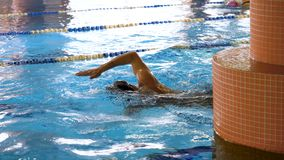 Athletes, swimmers training along tracks in sports pool for swimming, healthy lifestyle concept. Swimmers in blue, clear stock images