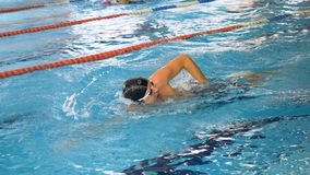 Athletes, swimmers training along tracks in sports pool for swimming, healthy lifestyle concept. Swimmers in blue, clear stock photo