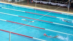 Athletes swimming competition in the pool stock video