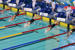 Athletes woman dive into the pool Stock Photos
