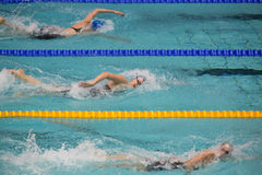 Athletes women swim in Olympic Sports complex Stock Photo