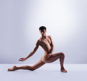 Athletic ballet dancer in a perfect shape performing Stock Photography