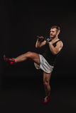 Athletic bearded boxer with gloves on a dark background Stock Images