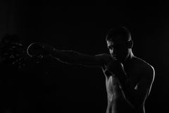 Athletic bearded boxer with gloves on a dark background Stock Photos