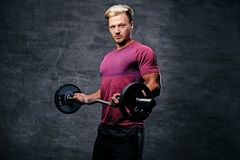 Blond male doing a biceps workout with a barbell. Athletic blond male doing a biceps workout with a barbell Royalty Free Stock Images