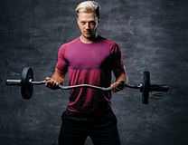 Blond male doing a biceps workout with a barbell. Athletic blond male doing a biceps workout with a barbell Stock Photos