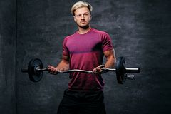 Blond male doing a biceps workout with a barbell. Athletic blond male doing a biceps workout with a barbell Stock Images