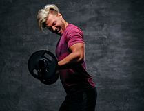 Athletic blond male doing a biceps workout with a barbell. Emotional, screaming, athletic, blond male doing a biceps workout with a barbell Stock Photos