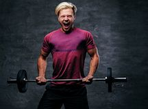 Athletic blond male doing a biceps workout with a barbell. Emotional, screaming, athletic, blond male doing a biceps workout with a barbell Royalty Free Stock Photography