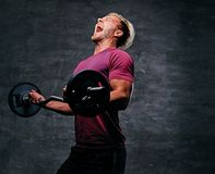 Athletic blond male doing a biceps workout with a barbell. Emotional, screaming, athletic, blond male doing a biceps workout with a barbell Royalty Free Stock Images