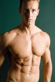 Athletic body builder Royalty Free Stock Image
