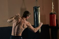 Athletic boxer throwing a fierce and powerful punch. Photo of muscular man in gym. royalty free stock photo