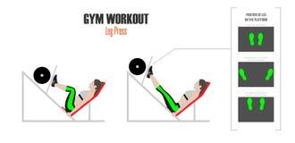 athletic exercises Ασκήσεις σε μια γυμναστική Τύπος ποδιών Θέσεις του ποδιού στην πλατφόρμα Γυναίκα που κάνει την άσκηση στη μηχα Στοκ Εικόνες