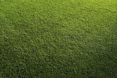 Athletic Field Grass Stock Photos