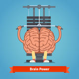 Athletic and fit brain doing heavy weight training. Training mind powerful. Flat vector concept illustration royalty free illustration