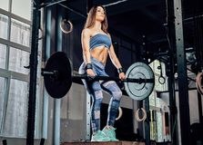 Athletic fitness woman wearing sportswear doing exercise with a barbell while standing on a sports pedestal in a gym. Beautiful athletic fitness woman wearing royalty free stock photos