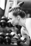 Athletic girl doing exercise with dumbbells in gym Stock Image