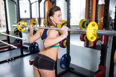 Athletic girl engaged in the gym Stock Photography