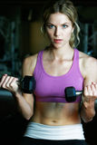 Athletic Girl Lifting Weights Stock Photo