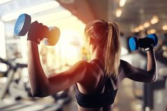 Athletic girl trains biceps at the gym. Athletic muscular woman trains biceps with dumbbells at the gym Royalty Free Stock Photo