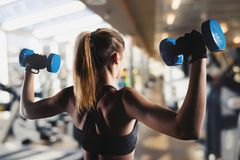Athletic girl trains biceps at the gym. Athletic muscular woman trains biceps with dumbbells at the gym Stock Photos