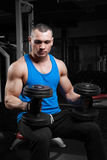 Athletic guy bodybuilder , execute exercise with dumbbells Royalty Free Stock Images