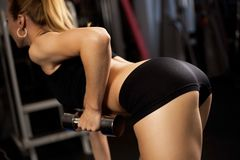 Athletic lady doing workout with weights Royalty Free Stock Photo