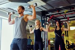 Athletic male and two slim female fitness models doing shoulder exercises with dumbbells. Handsome blond, athletic male and two slim female fitness models doing Stock Images