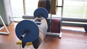 Athletic man doing biceps curls with EZ barbell stock footage