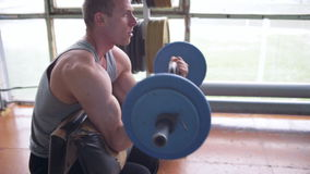 Athletic man doing biceps curls with EZ barbell