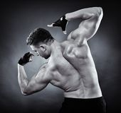 Athletic man doing bodybuilding moves Royalty Free Stock Image