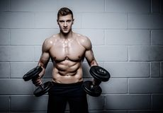 Athletic man doing exercises with dumbbells in The Gym's Royalty Free Stock Photo