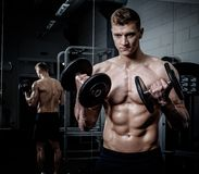 Athletic man doing exercises with dumbbells in The Gym's Stock Image