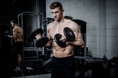 Athletic man doing exercises with dumbbells in The Gym's Stock Photos