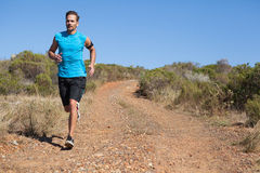 Athletic man jogging on country trail Royalty Free Stock Image