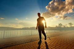 Athletic man after jogging in the rays of the evening sun. Sport Stock Photography