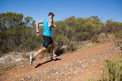 Athletic man jogging up country trail Stock Image