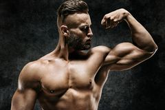 Athletic man showing his bicep. Stock Image