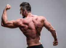 Athletic man showing his muscles Stock Image