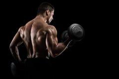 Athletic man training biceps on black background. Athletic muscular man training biceps with dumbbells on black background stock images
