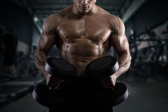Athletic man training biceps at the gym. Athletic muscular man training biceps at the gym Stock Image
