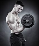 Athletic man working out with heavy dumbbells Stock Photography