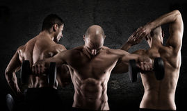 Athletic men workout. Athletic muscular men workout and poses of bodybuilding stock photography